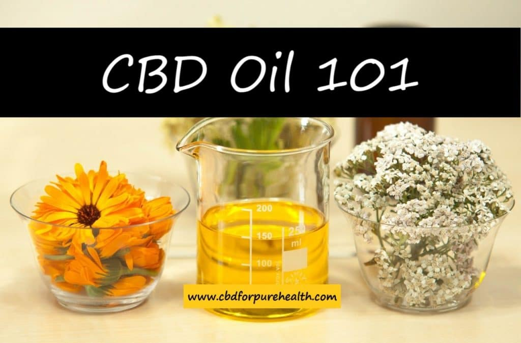 Does Hemp Oil Contain CBD | cbdforpurehealth.com