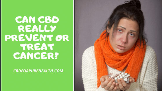 CBD oil for cancer